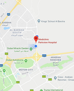 Mediclinic map.png