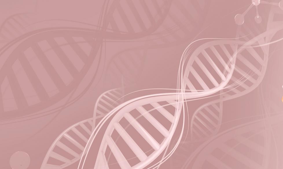 DNA ROSA.png