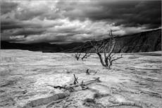 Desolation, Mammoth