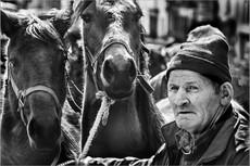 Horse Trader, Middleton