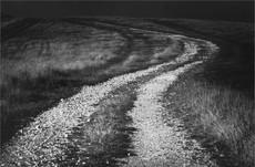 Downland Track, Firle