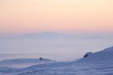 Dawn, Rannoch Moor