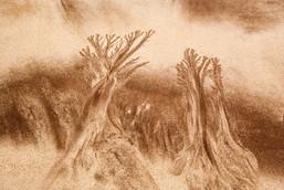 Sand Pattern, Ventry Bay