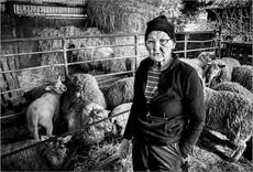 Kitty, Still Farming at 80