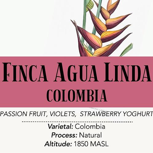 COLOMBIA - Agua Linda