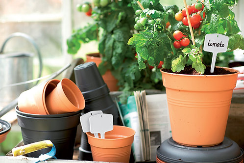 Green Basics Pots