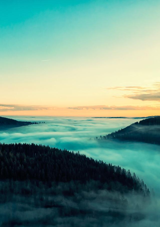 the-fog-I.jpg