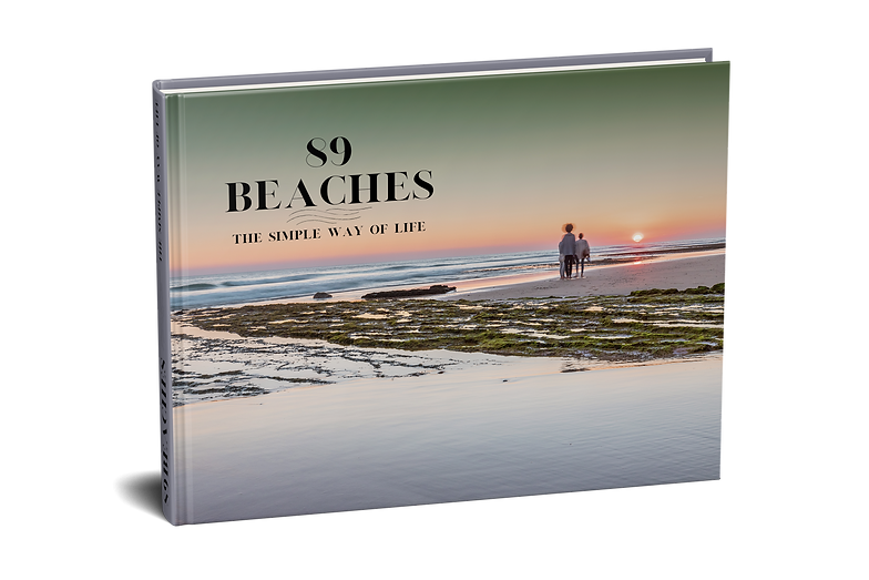 Cover89BEACHES-transparent.png