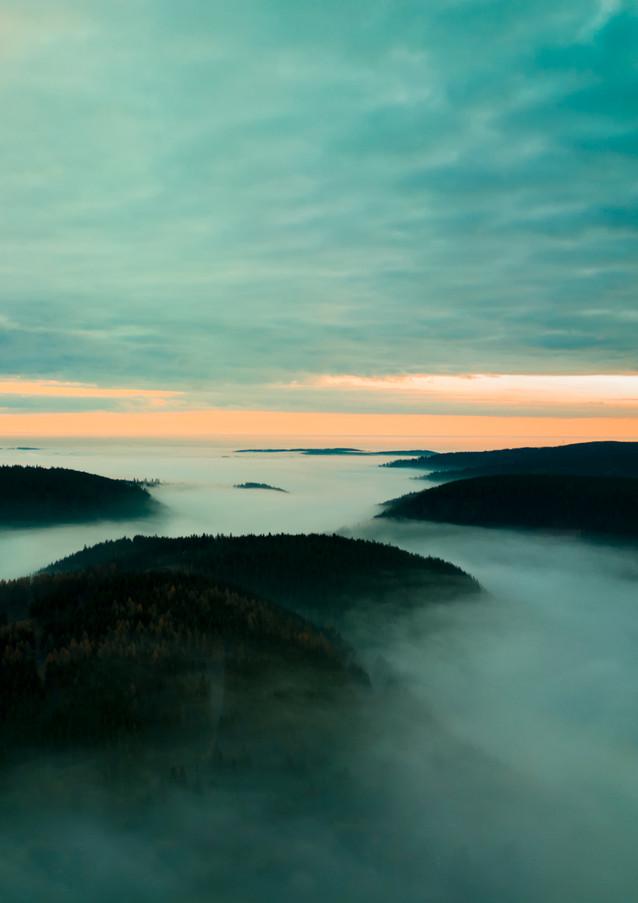 the-fog-II.jpg