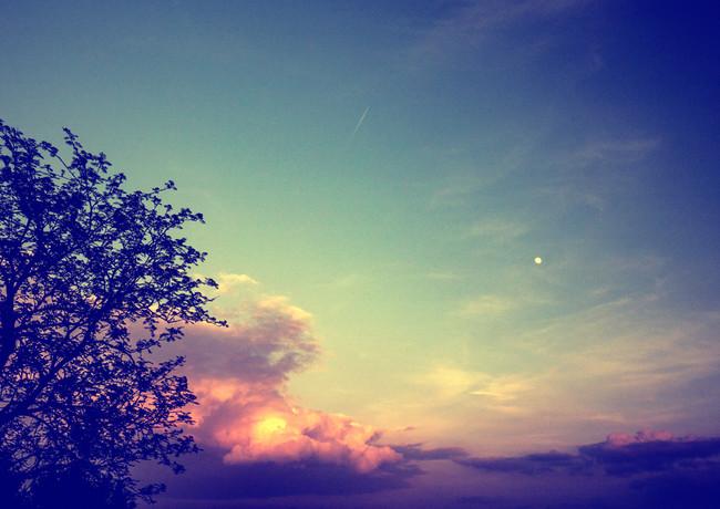 night sky I.jpg