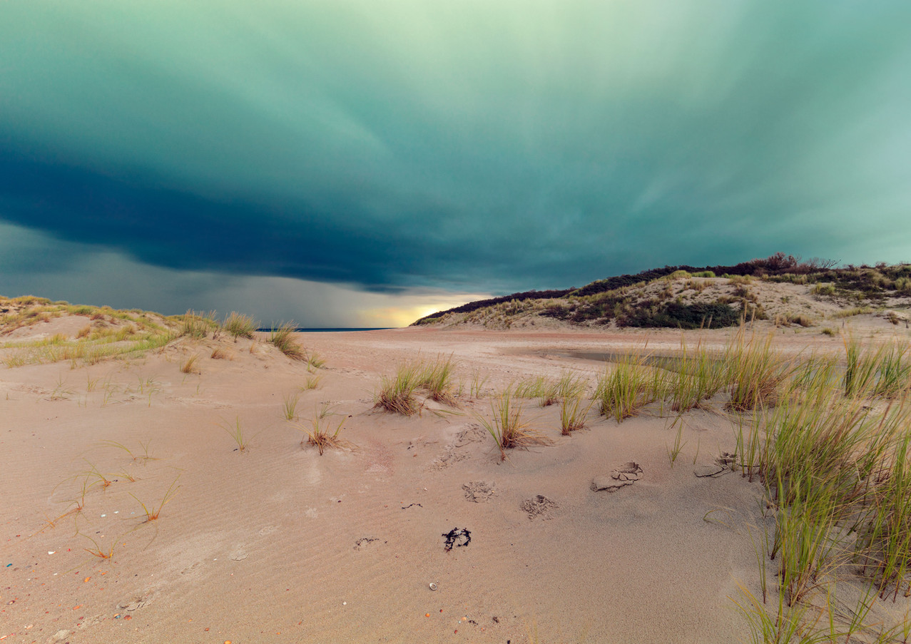 in-the-dunes-I.jpg