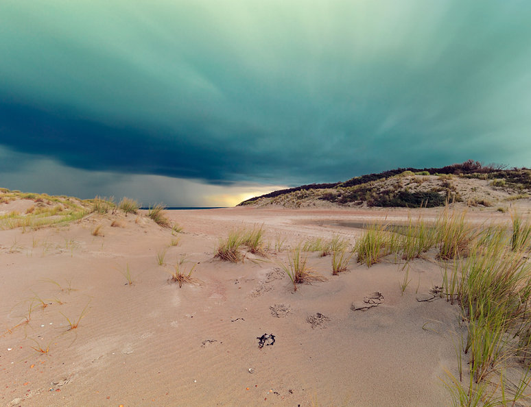 in the dunes I
