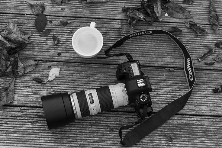 Foto-mit-Herbstblätter-Wiederhergestel