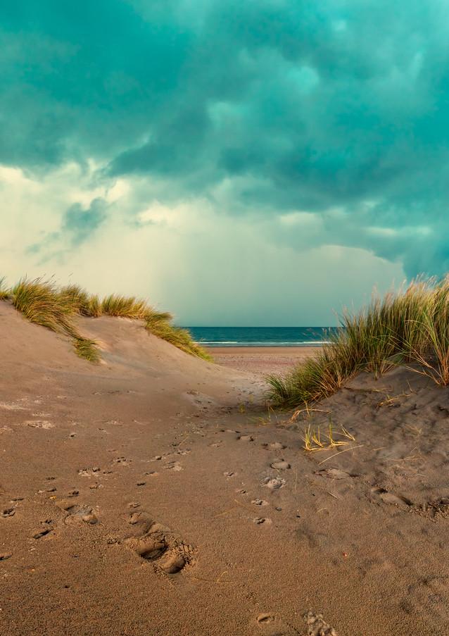 in-the-dunes-II.jpg