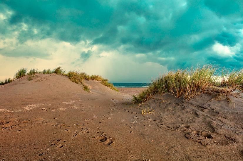 in the dunes II