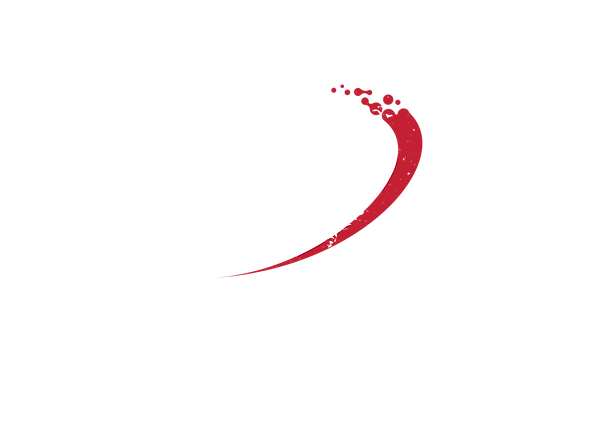 DLXBoxingLogo_ White.png