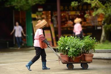 HongKong,China
