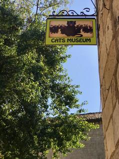 CatsMuseum,Kotor,Montenegro