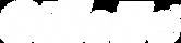 Gillette_Logo_White.png