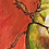 Thumbnail: Постер Egor
