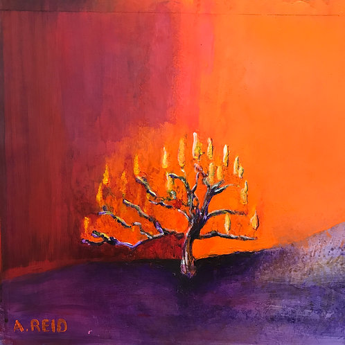 BURNING BUSH - PRINT 12 X 12