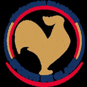 Logo FFSG version prestige