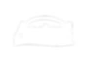Logo-Austral_blanco.png