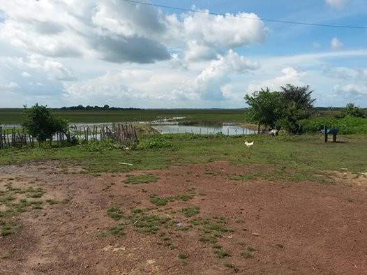 Campos inundáveis da Baixada, em Arari. Imagem divulgação.