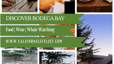 Bodega Bay: Stay || Eat || Play