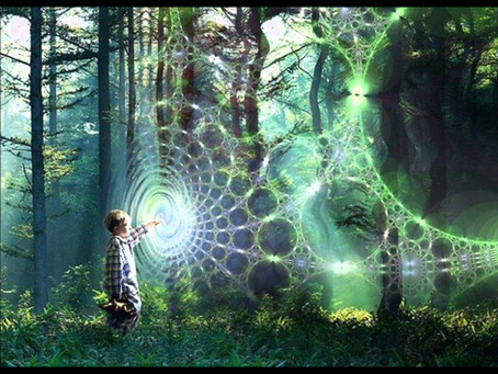 靈性101:覺察「型態場」對我們的影響