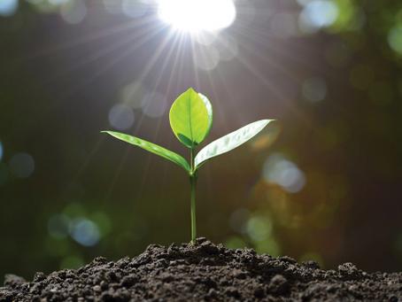 [長期活動]關於心靈成長/靈性發展,你想知道什麼?