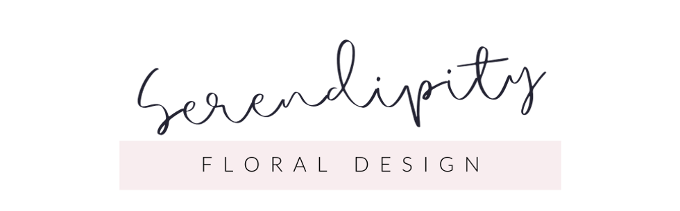 NEW serendipity logo 2.png