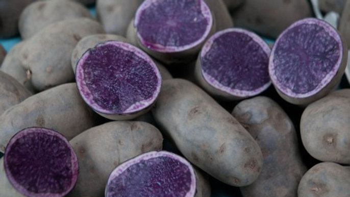 Blue Salad Potatoes