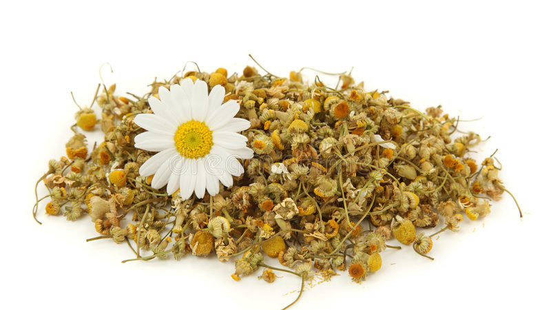 Whole Chamomile Herbal Tea