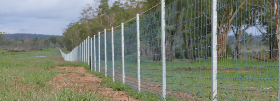 ddlP1020056 exclusion fence_Easy-Resize.