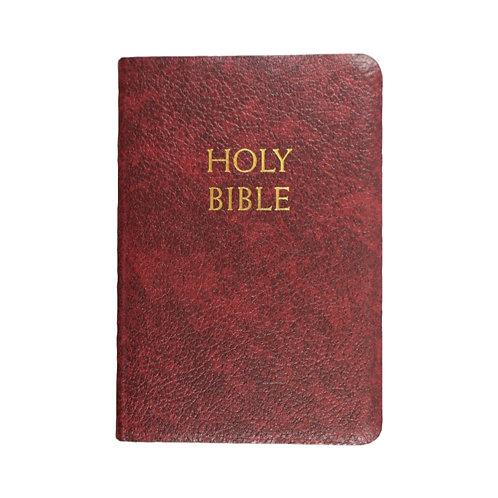 NAB Holy Bible