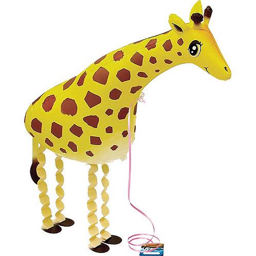 Giraffe Walking Pet