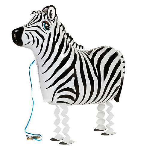 Zebra Walking Pet