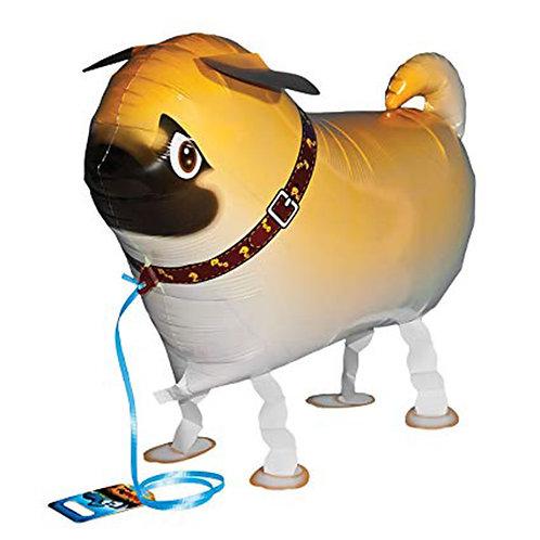 Pug Dog Walking Pet