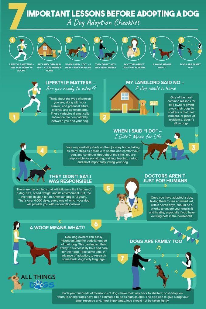 Dog-Adoption-Checklist.jpg