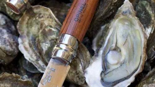 N°09 Oyster אופינל מס 9 צדפות