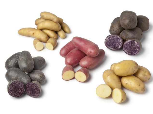 תפוחי אדמה בשלל צבעים