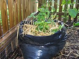 הוראות לערוגה מוגבהת לגידול תפוח אדמה