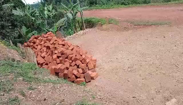 Brick Moving Time!!!