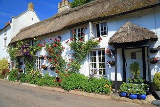 Beautiful thatched cottage with garden i