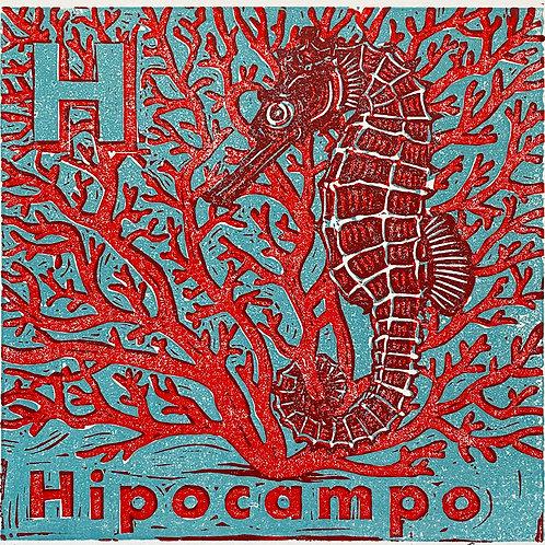 Hipocampo trial #IV