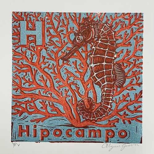Hipocampo trial #V