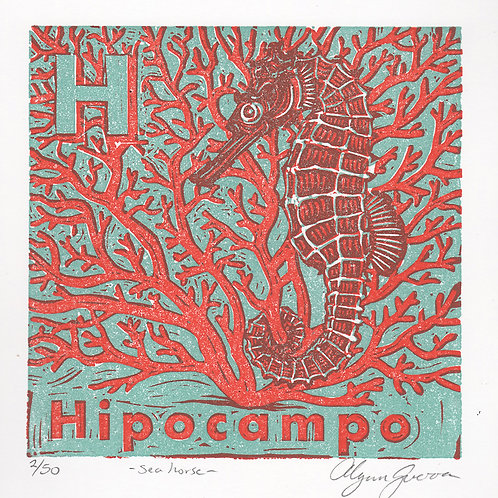 Hipocampo (spanish alphabet)