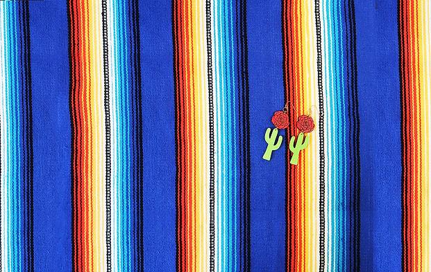 cactus-mestiza-cover.jpg