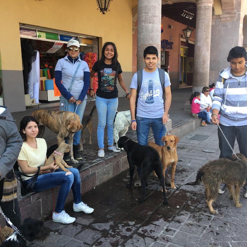 Celaya Adoption Group